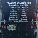 AL Wildlife Pro